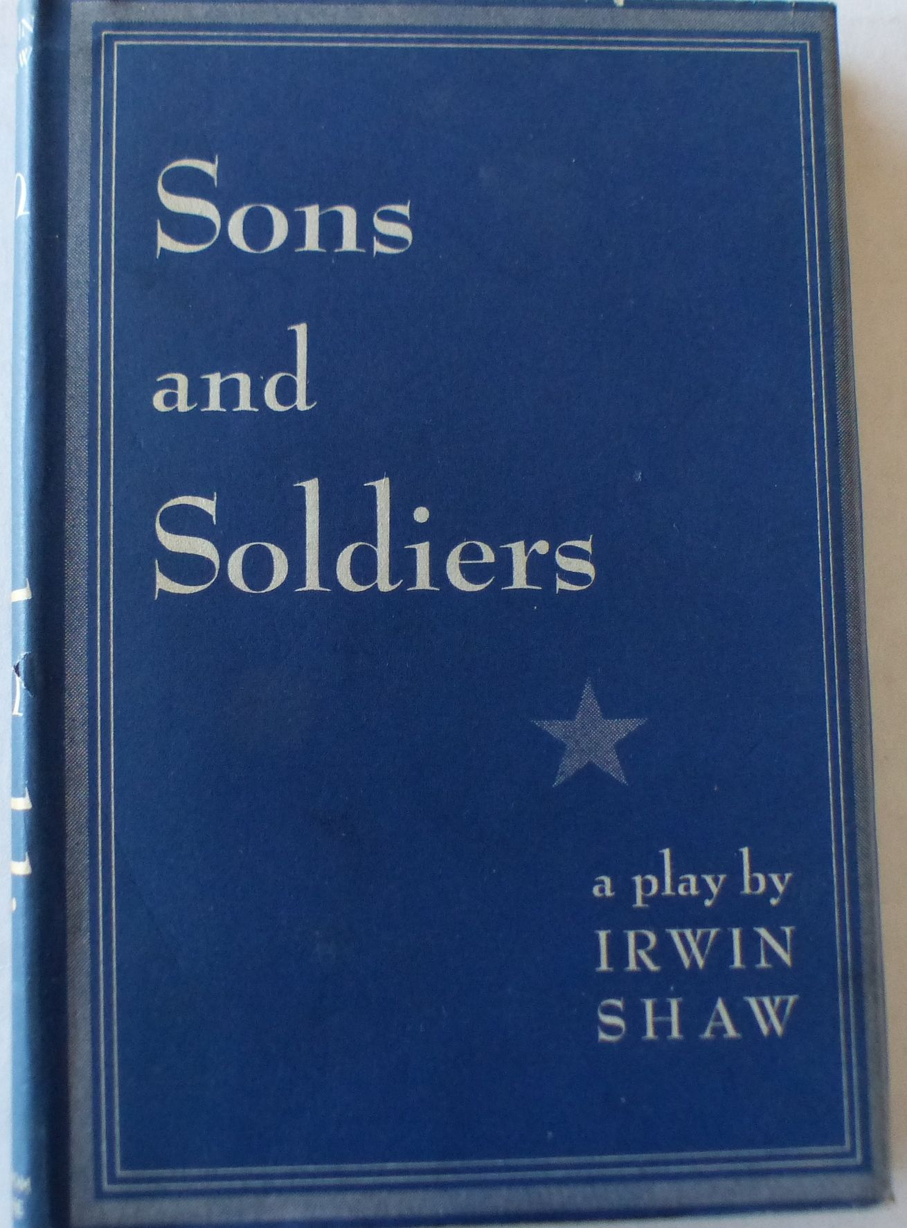 Image for Sons and Soldiers