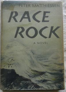 Image for Race Rock